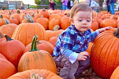 kid squatting with pumpkins